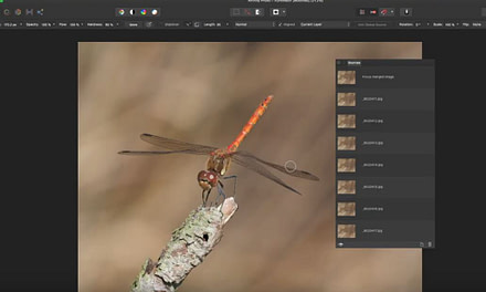Affinity Photo Tutorial – Focus Merging for Maximum Sharpness