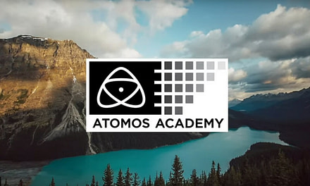 Atomos Lockdown Safari competition attracts stunning entries from around the world