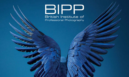 The British Institute Of Professional Photography – BIPP